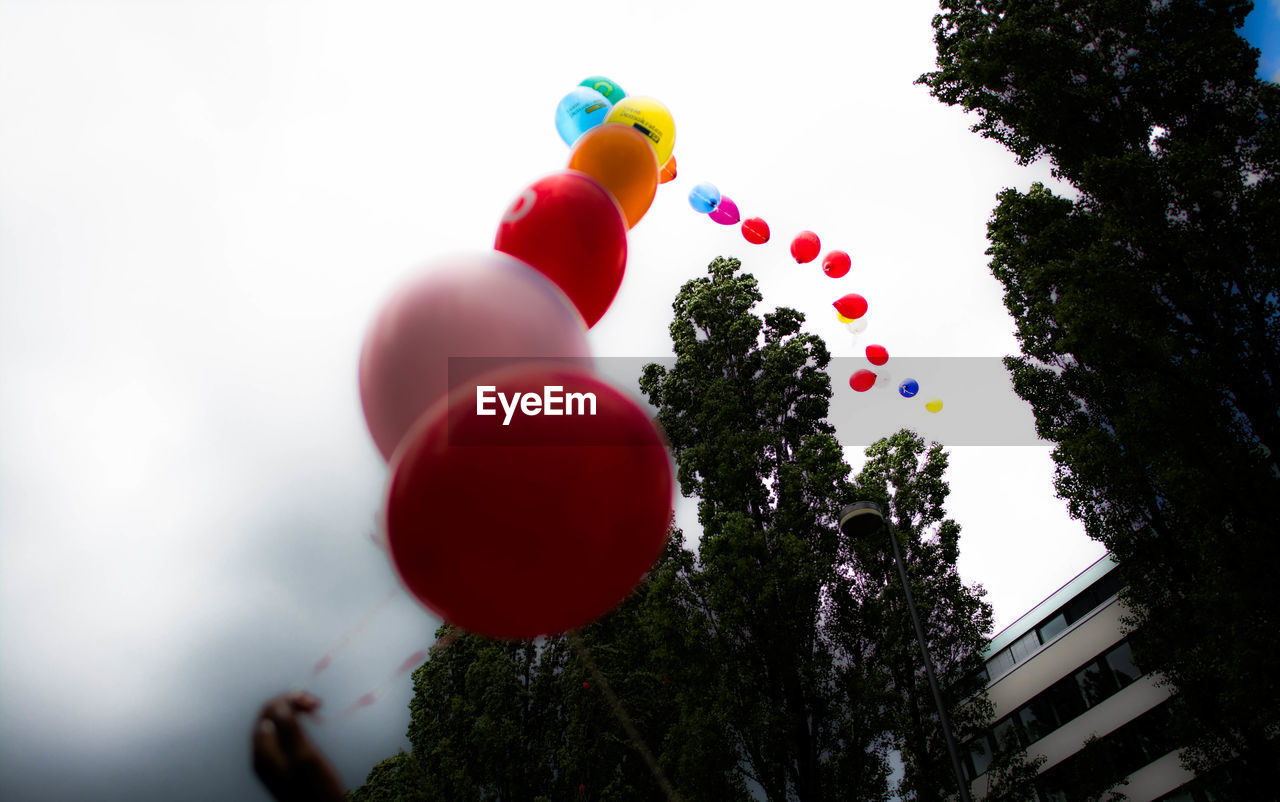balloon, tree, multi colored, celebration, helium balloon, low angle view, day, outdoors, no people, fragility, nature, close-up, sky