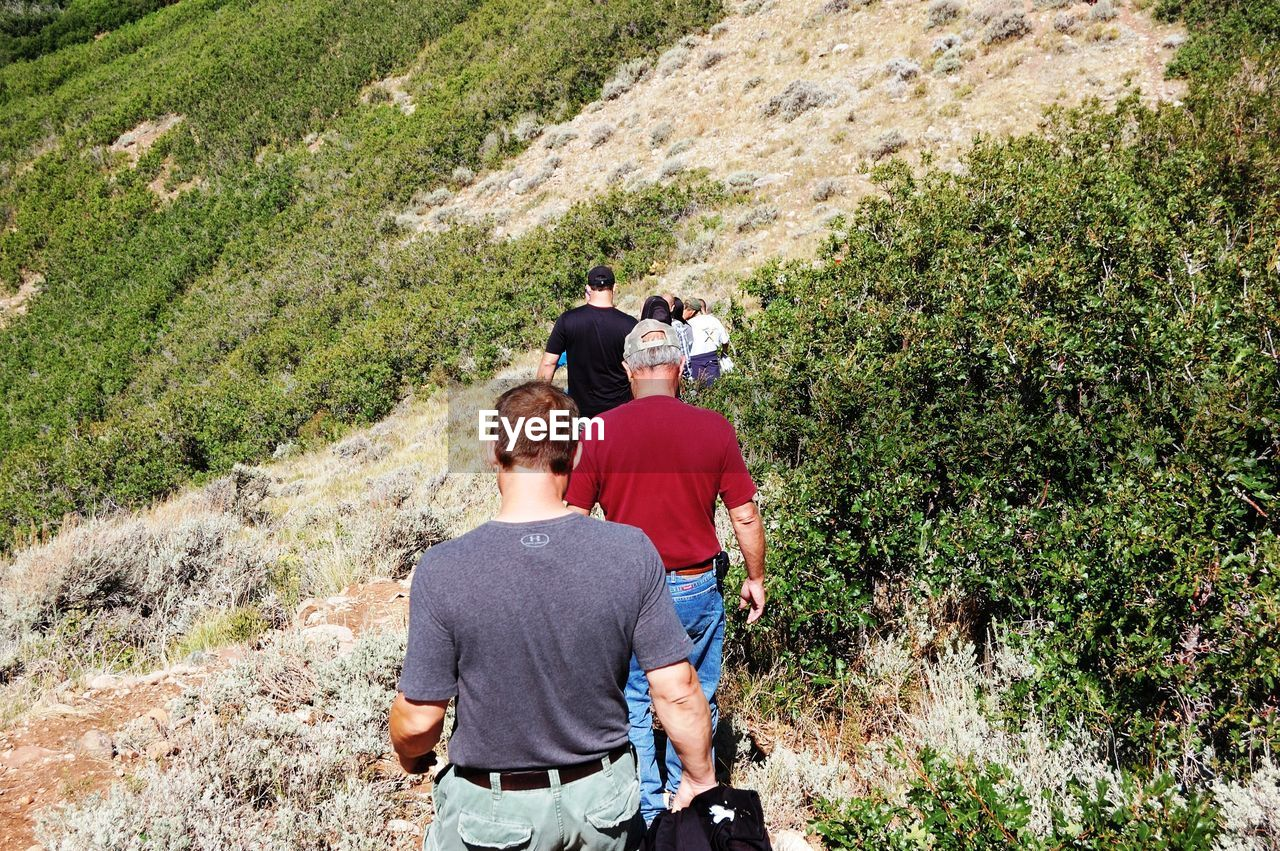 rear view, adventure, togetherness, leisure activity, hiking, casual clothing, real people, recreational pursuit, day, backpack, two people, nature, walking, exploration, mountain, men, lifestyles, friendship, bonding, outdoors, landscape, women, standing, vacations, people, adult, scenics, photography themes, boys, tree, photographing, camera - photographic equipment, young adult, beauty in nature