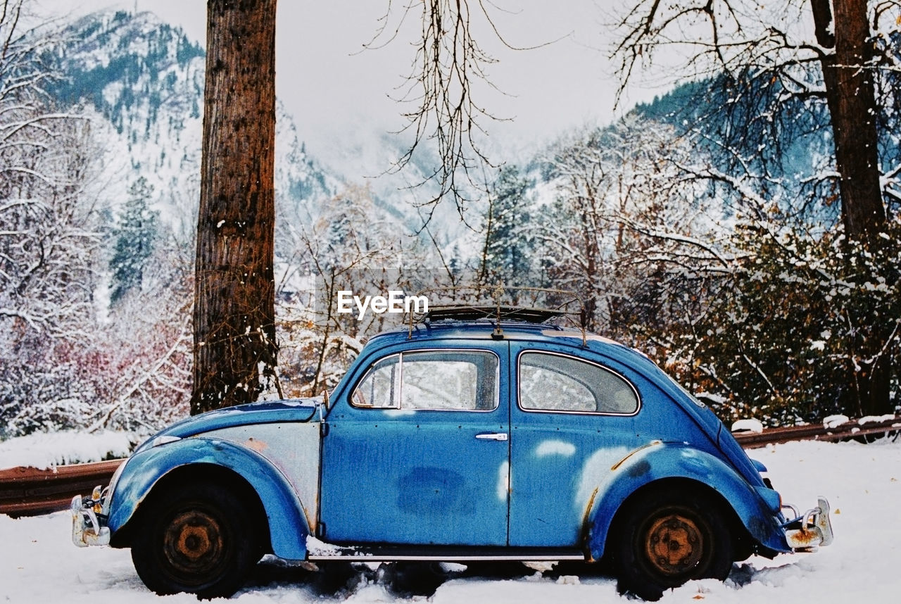 tree, snow, car, motor vehicle, winter, mode of transportation, cold temperature, trunk, tree trunk, land vehicle, transportation, day, plant, nature, no people, land, blue, outdoors, covering, extreme weather