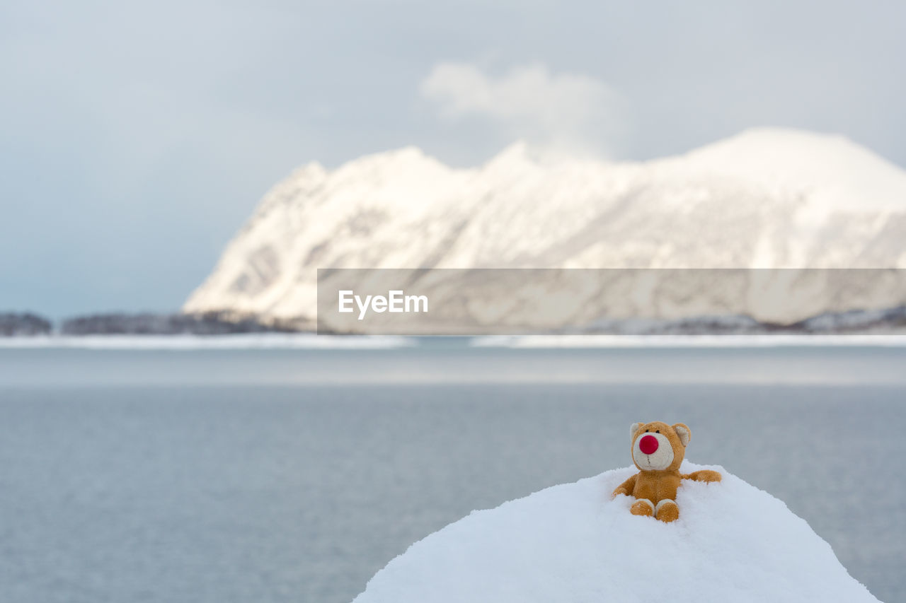 Abandoned Stuffed Toy On Snow Against Sky