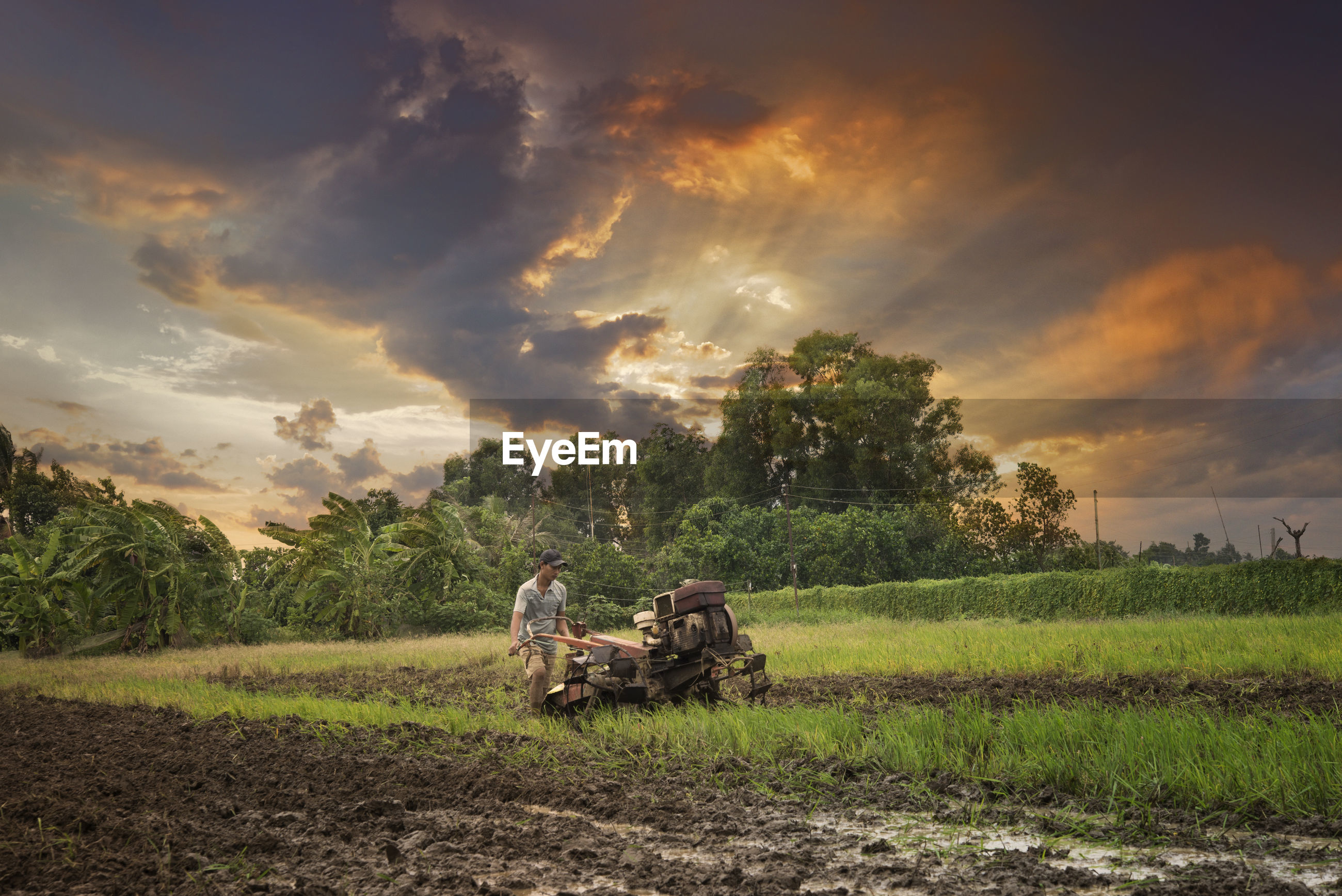 Farmer working at agricultural field against sky sunset