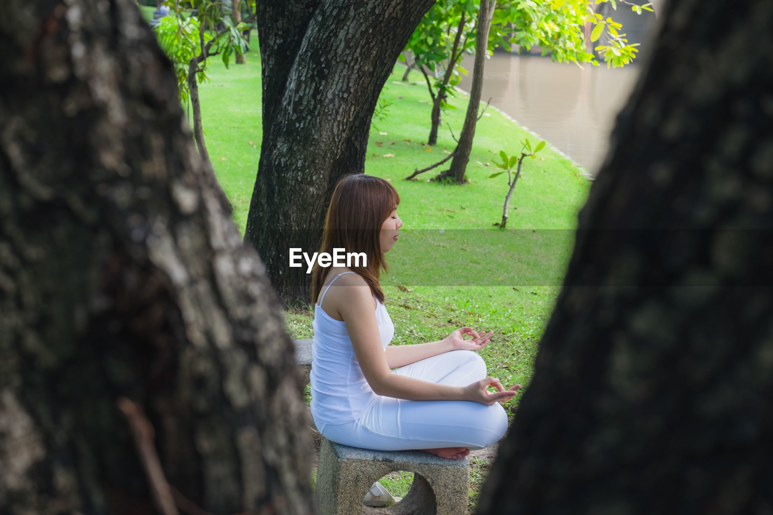Woman meditating while sitting by tree in park