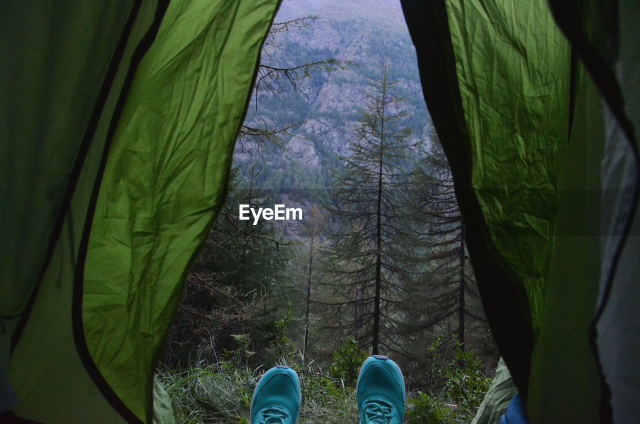 Low section of person relaxing in tent at forest