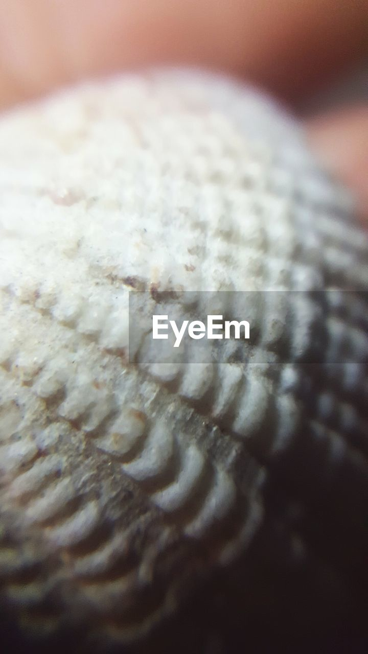 close-up, pattern, selective focus, wool, indoors, no people, textile, textured, full frame, day