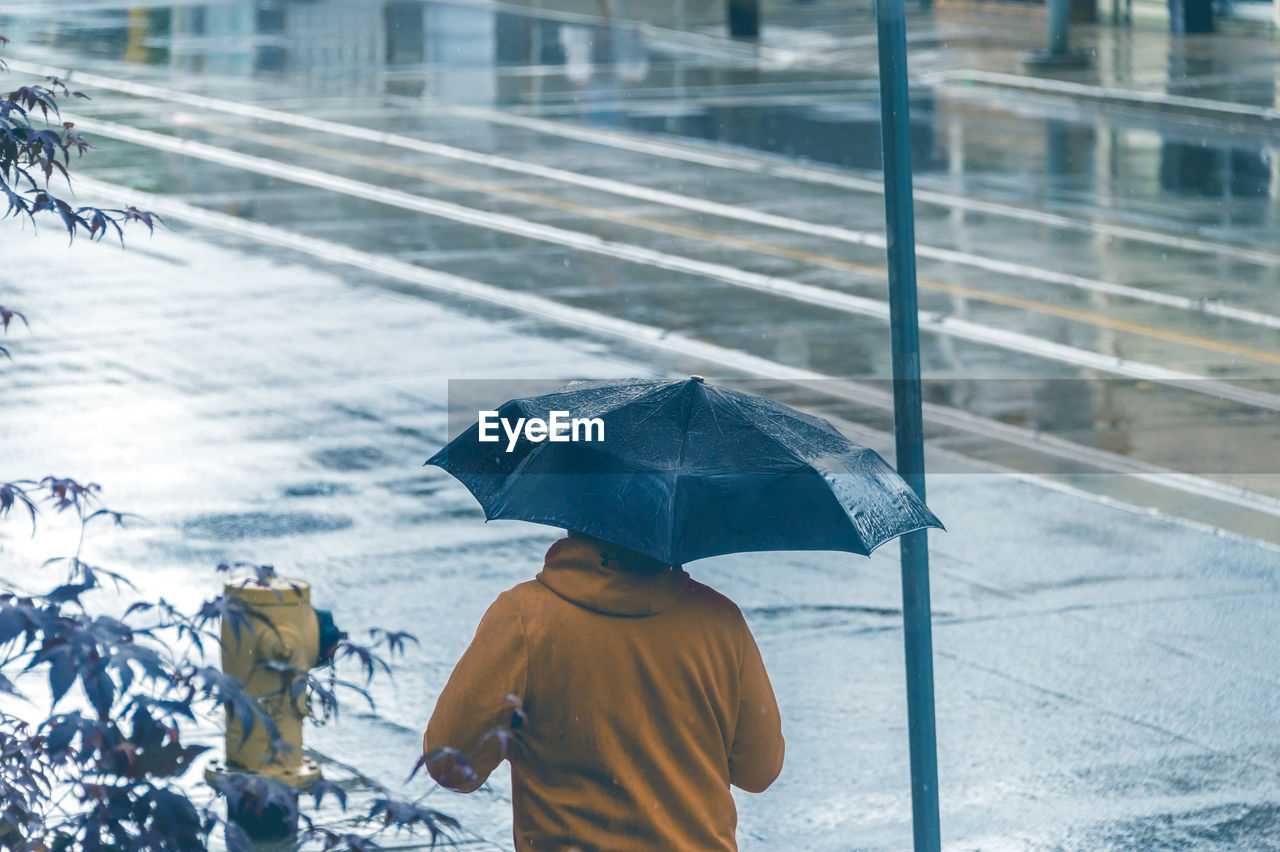 Rear View Of Person Holding Umbrella