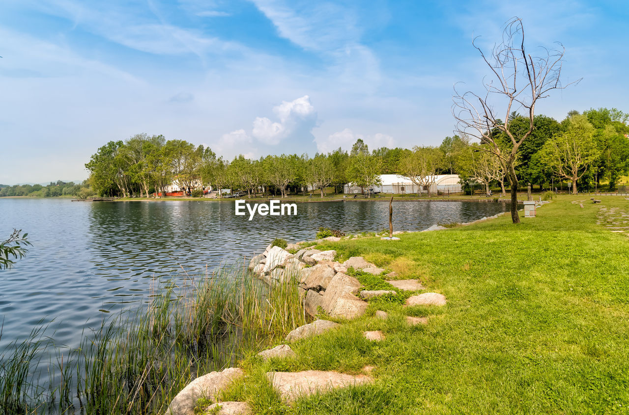plant, tree, water, sky, grass, beauty in nature, cloud - sky, lake, nature, tranquility, scenics - nature, green color, tranquil scene, day, growth, no people, non-urban scene, outdoors