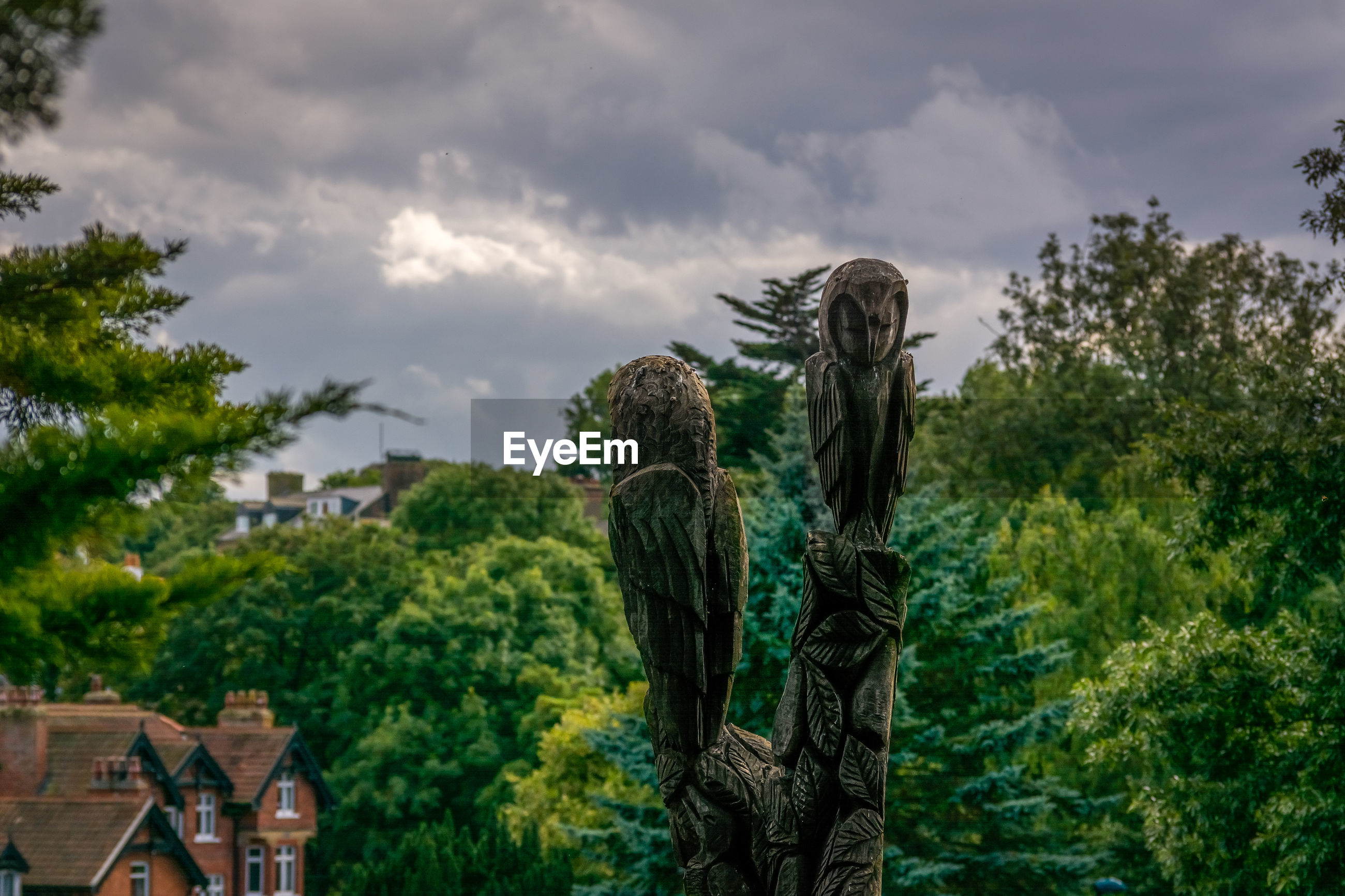 LOW ANGLE VIEW OF STATUE AGAINST TREES