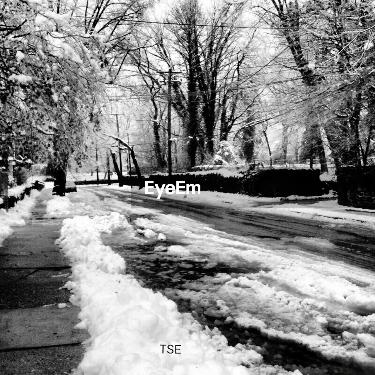 snow, winter, cold temperature, weather, nature, tree, cold, road, outdoors, bare tree, frozen, day, snowing, no people, beauty in nature