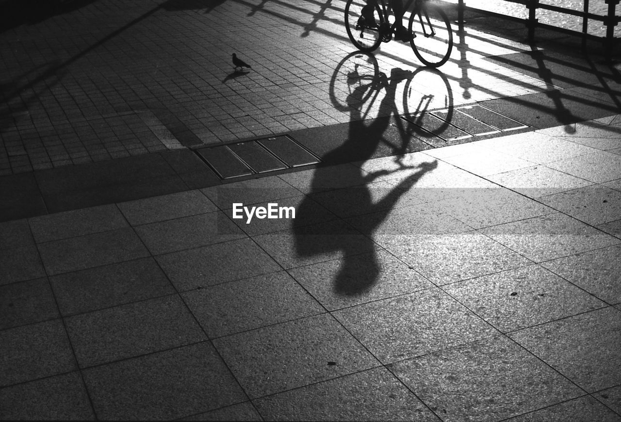 Shadow Of Person Riding Bicycle On Walkway During Sunny Day