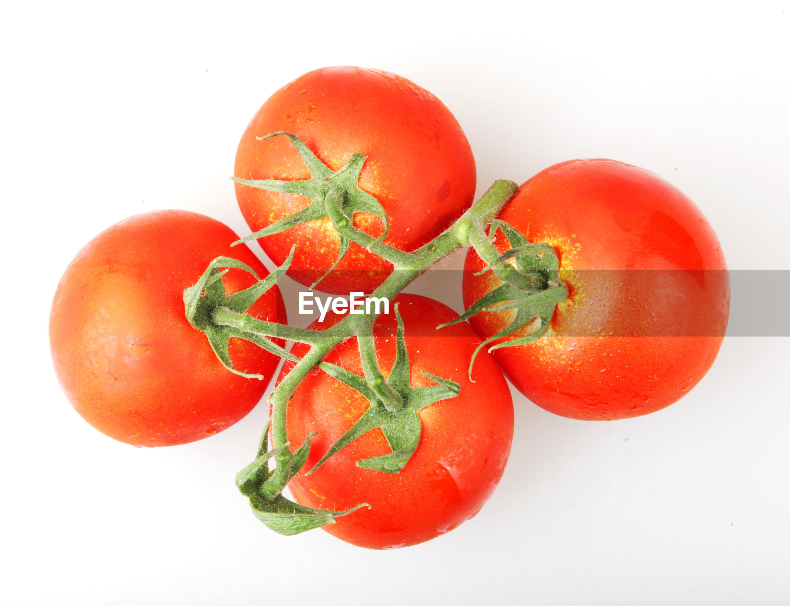 Close-up of red tomatoes on white background