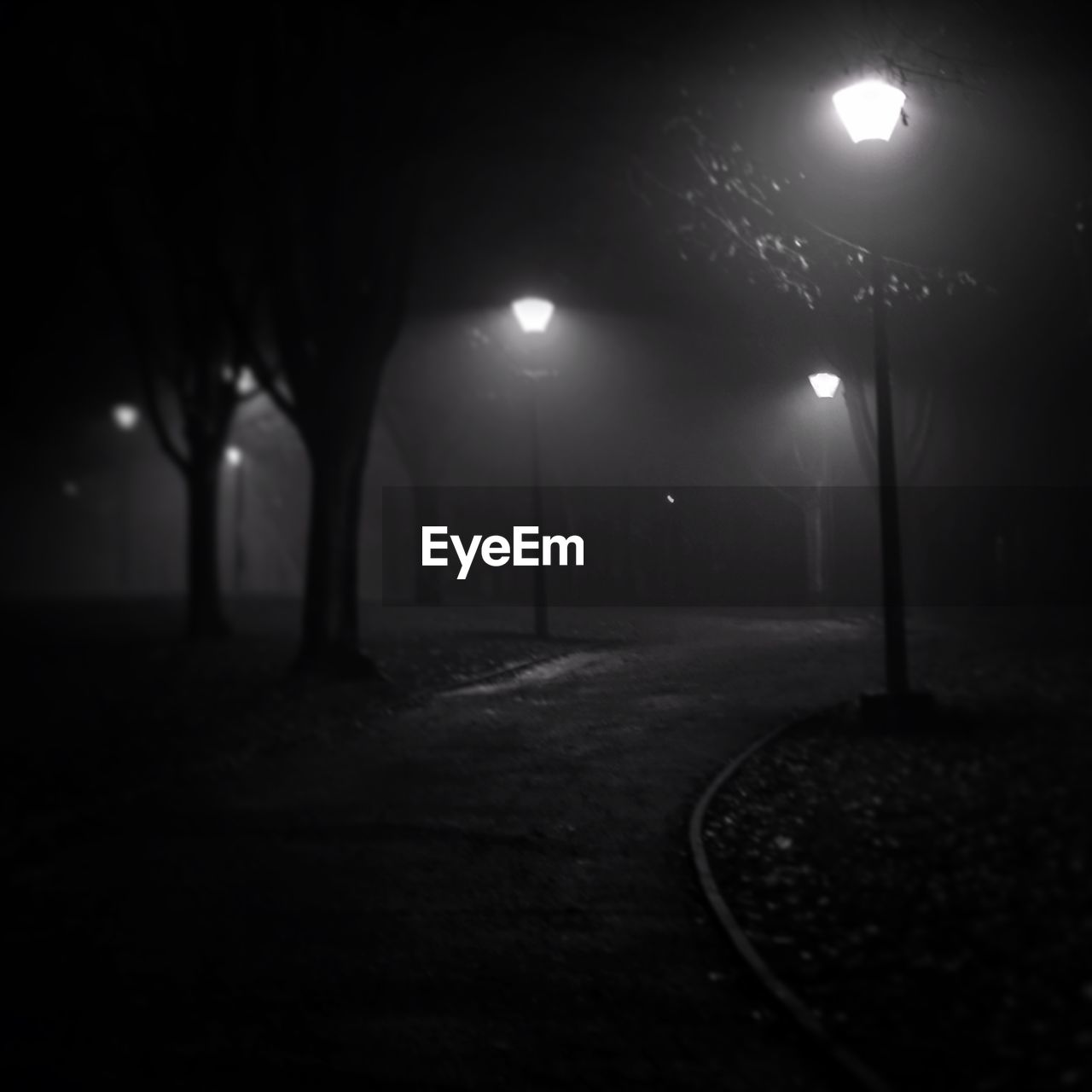 night, illuminated, street light, lighting equipment, outdoors, no people, the way forward, tree, fog, moon, nature, sky