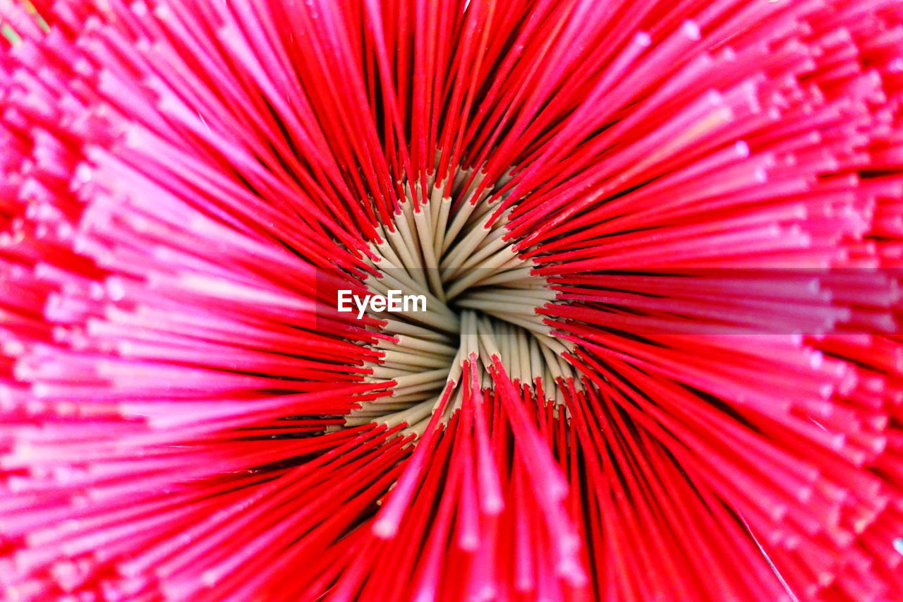 Full Frame Shot Of Red Flower