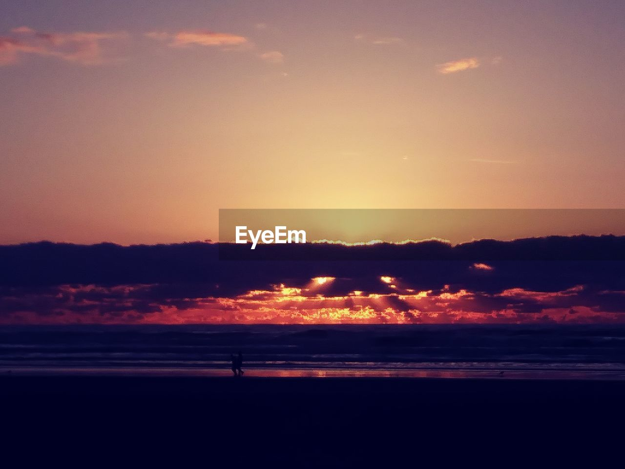 sunset, silhouette, nature, beauty in nature, scenics, orange color, tranquility, tranquil scene, sky, beach, outdoors, sea, no people, landscape, water, tree