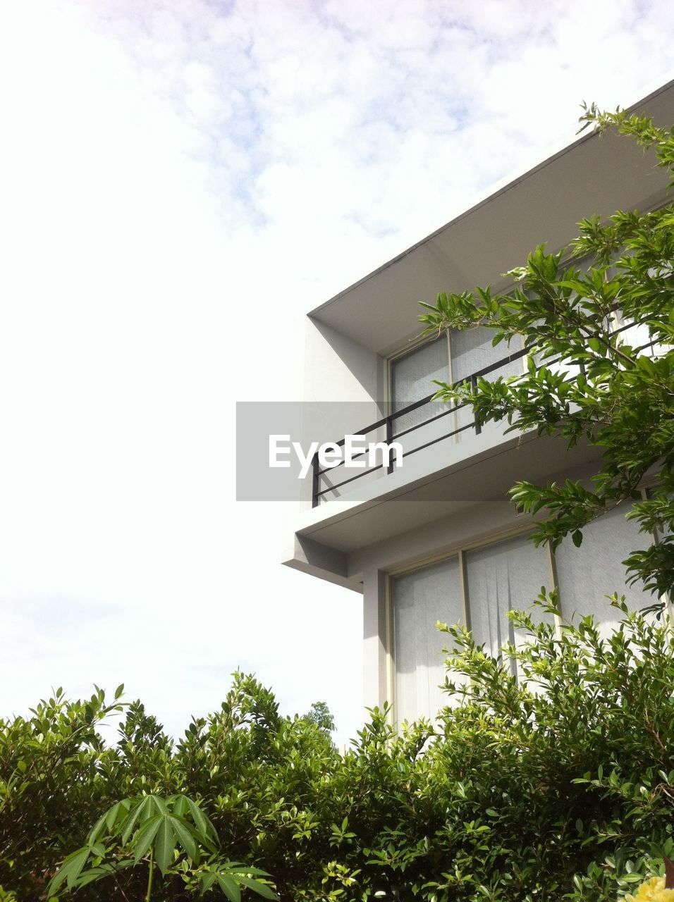 built structure, tree, architecture, low angle view, building exterior, growth, house, day, sky, outdoors, no people, roof, plant, leaf, nature