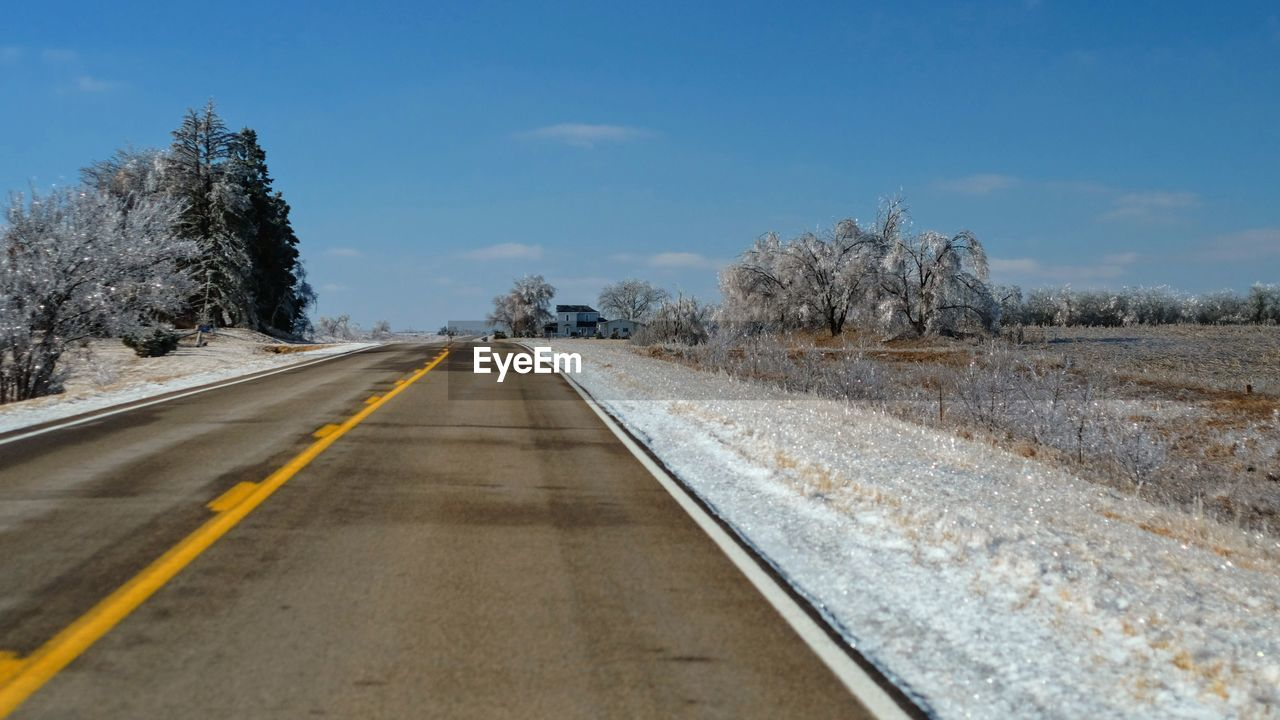 direction, the way forward, tree, road, transportation, diminishing perspective, sky, plant, vanishing point, no people, nature, day, winter, sign, road marking, cold temperature, snow, marking, non-urban scene, symbol, outdoors, surface level, dividing line