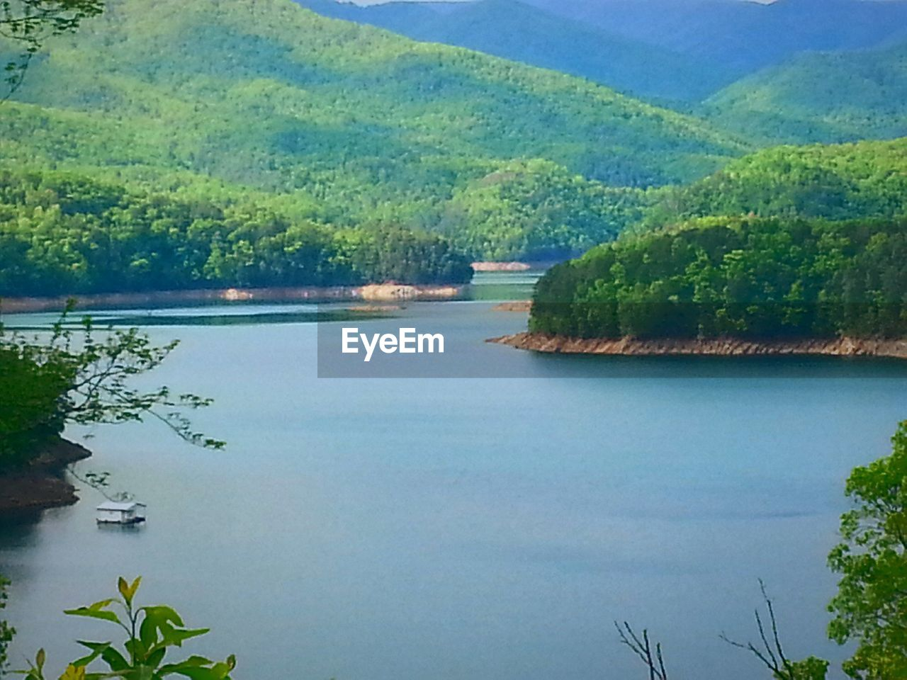 water, tree, tranquil scene, nature, no people, beauty in nature, tranquility, scenics, outdoors, day, lake, forest, landscape, growth, mountain, sky