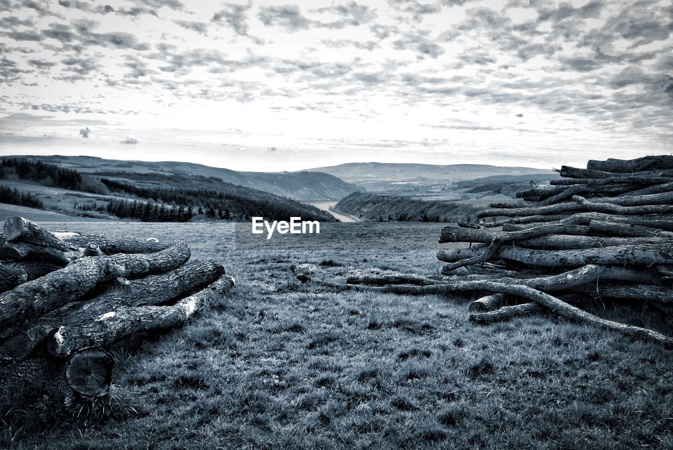 Wooden log on ground with mountain in background