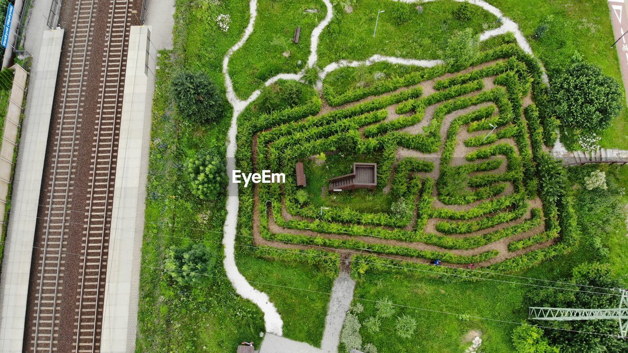 plant, tree, green color, growth, nature, day, high angle view, no people, outdoors, beauty in nature, landscape, architecture, scenics - nature, agriculture, environment, road, tranquility, field, land, garden, hedge, ornamental garden