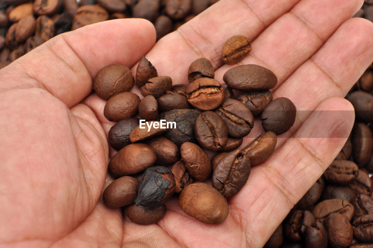 human hand, hand, food and drink, human body part, food, brown, roasted coffee bean, coffee - drink, holding, hands cupped, coffee, close-up, raw coffee bean, one person, large group of objects, coffee bean, body part, roasted, freshness, finger, caffeine