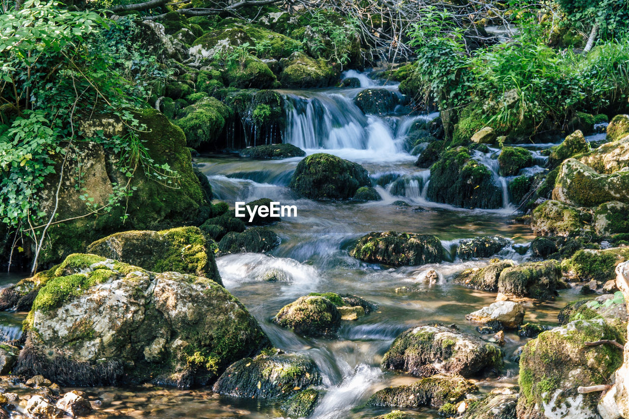 water, tree, rock, forest, beauty in nature, scenics - nature, motion, rock - object, plant, solid, long exposure, flowing water, waterfall, land, blurred motion, no people, nature, moss, flowing, outdoors, rainforest, stream - flowing water, purity