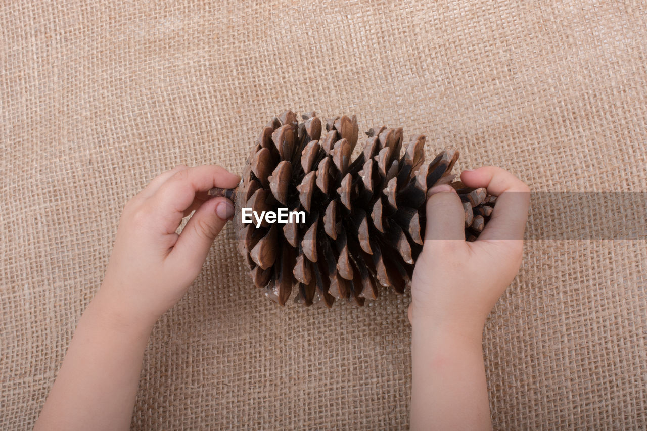 Cropped hand of child holding pine cone against burlap