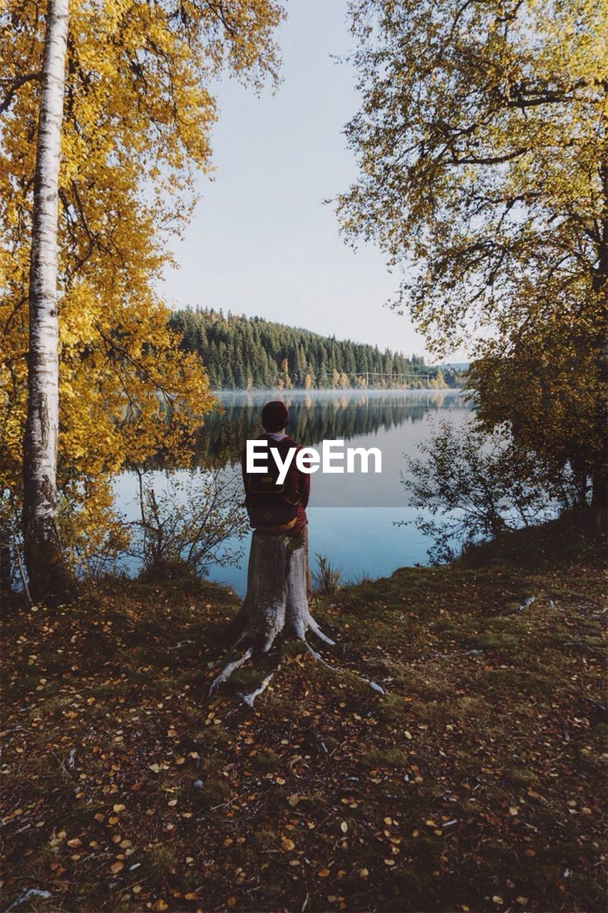 tree, real people, full length, rear view, nature, autumn, lifestyles, one person, leisure activity, forest, beauty in nature, standing, outdoors, day, men, scenics, sky, water, young adult, people