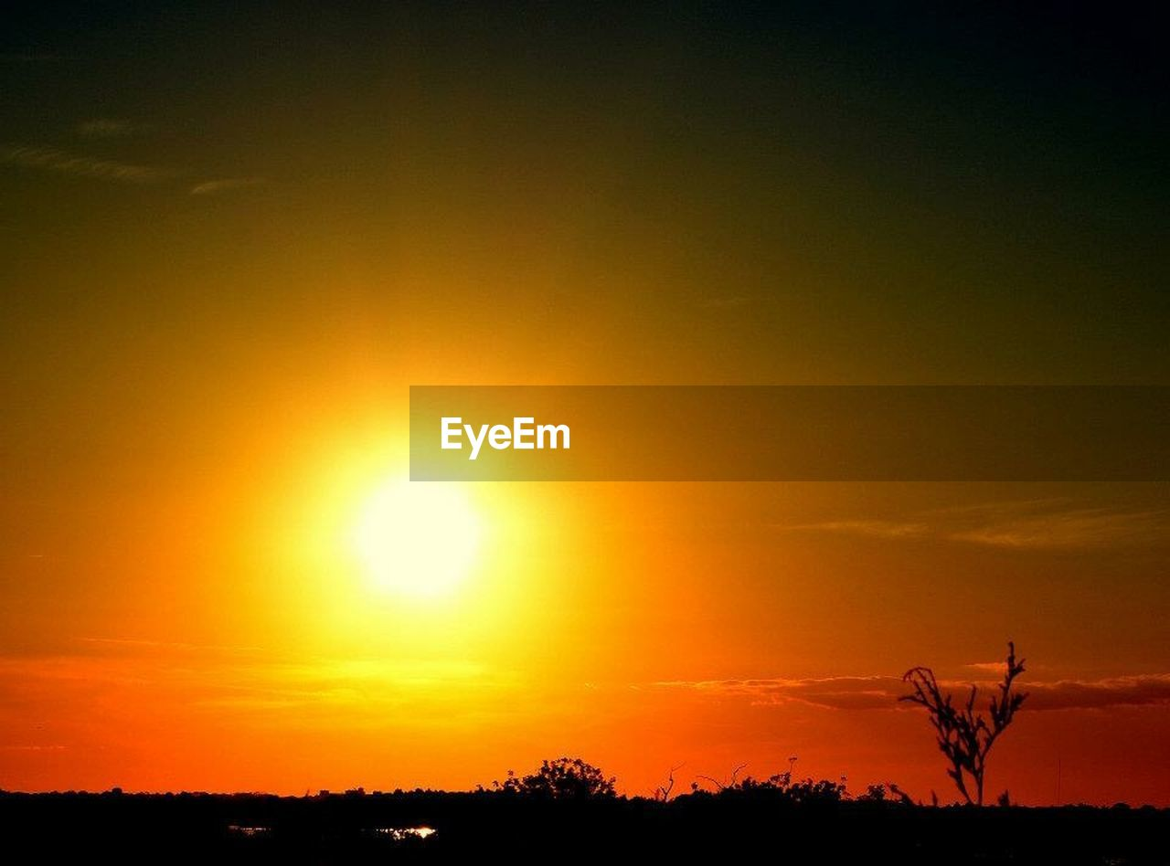 sunset, sun, orange color, nature, beauty in nature, scenics, tranquil scene, silhouette, sky, tranquility, tree, outdoors, no people, sunlight, growth, plant, day