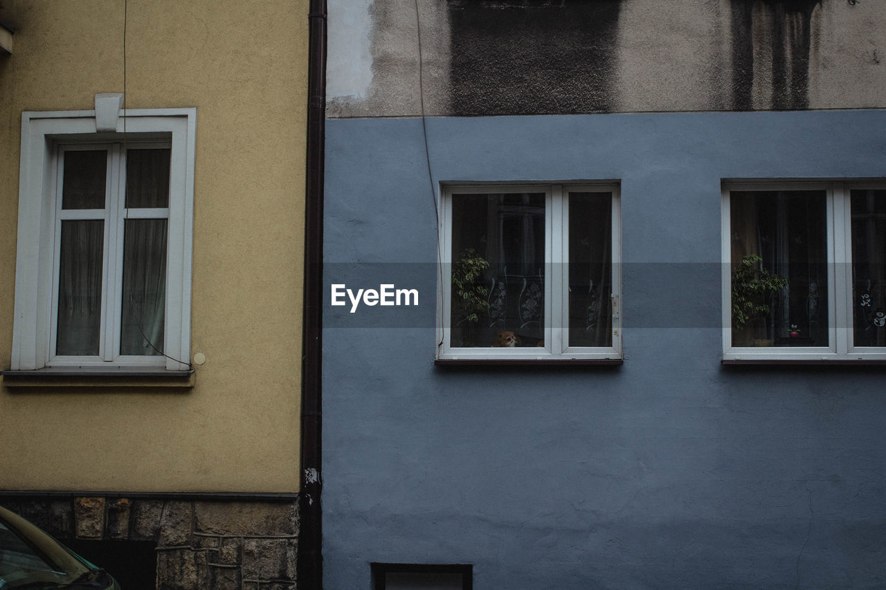 window, architecture, building exterior, built structure, outdoors, day, no people, nature, close-up