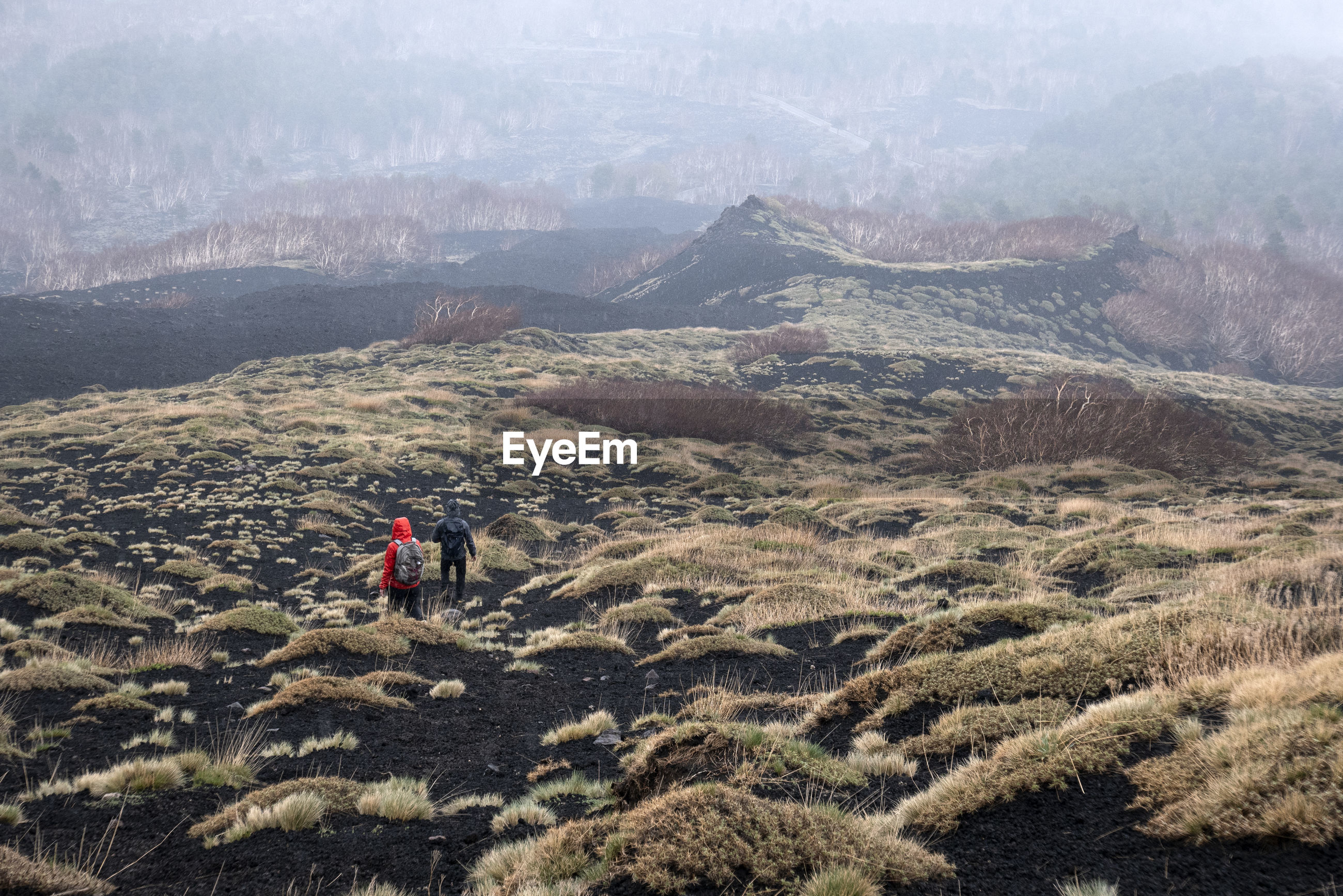 PANORAMIC VIEW OF PEOPLE ON LAND