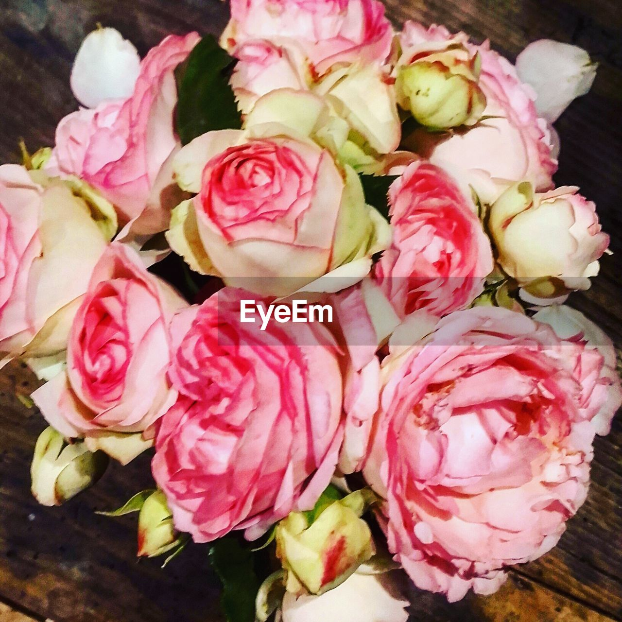 flower, rose - flower, petal, freshness, no people, fragility, close-up, pink color, flower head, nature, beauty in nature, day, bouquet, outdoors