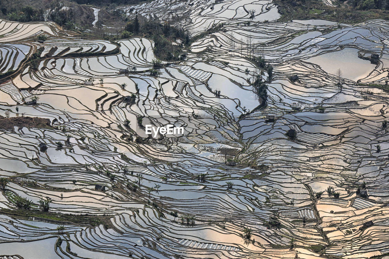 Scenic View Of Rice Terraces At Yuanyang County
