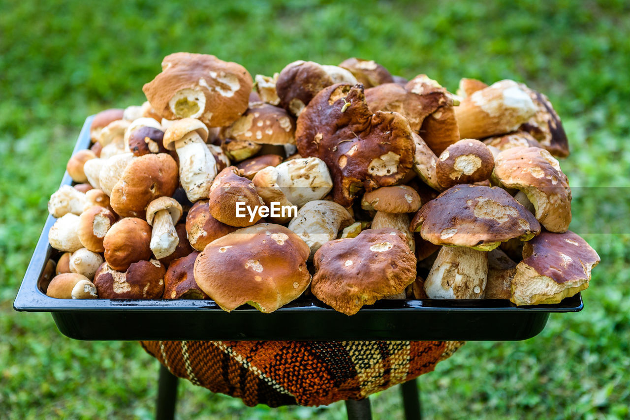 food, food and drink, freshness, focus on foreground, close-up, day, healthy eating, barbecue, no people, wellbeing, large group of objects, meat, ready-to-eat, group, vegetable, outdoors, abundance, snack, plant, grilled, temptation