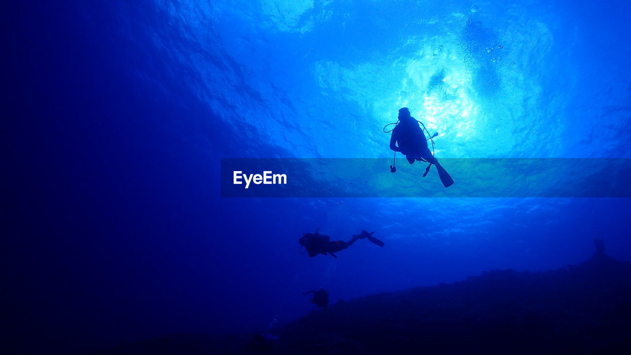 underwater, blue, undersea, sea, adventure, scuba diving, water, swimming, aquatic sport, exploration, sport, low angle view, silhouette, nature, animal wildlife, real people, animals in the wild, unrecognizable person, animal, outdoors, marine, underwater diving