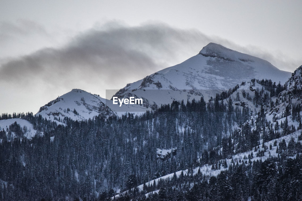 mountain, cold temperature, winter, snow, scenics - nature, beauty in nature, sky, tranquil scene, tranquility, environment, mountain range, landscape, non-urban scene, nature, no people, tree, cloud - sky, snowcapped mountain, plant, outdoors, mountain peak, range, place