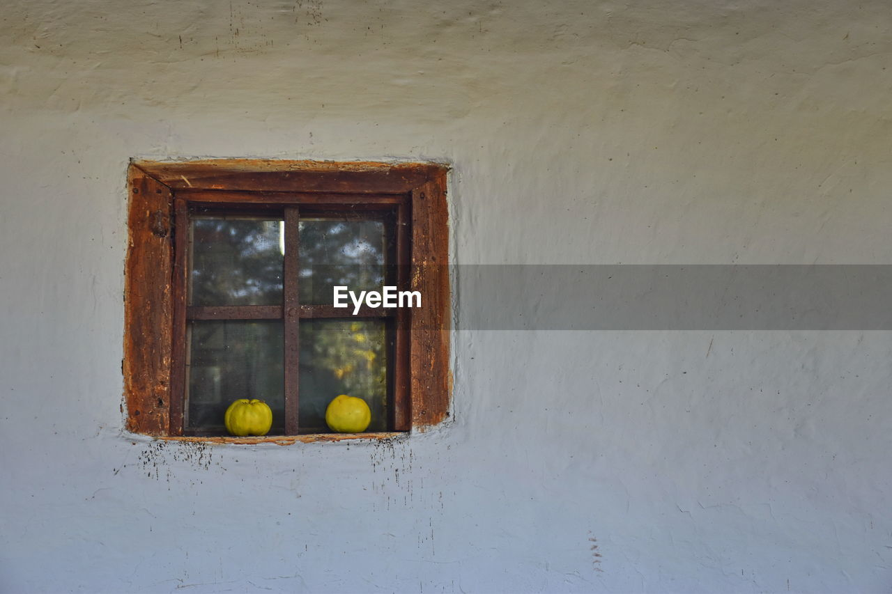 Pumpkins On Closed Window