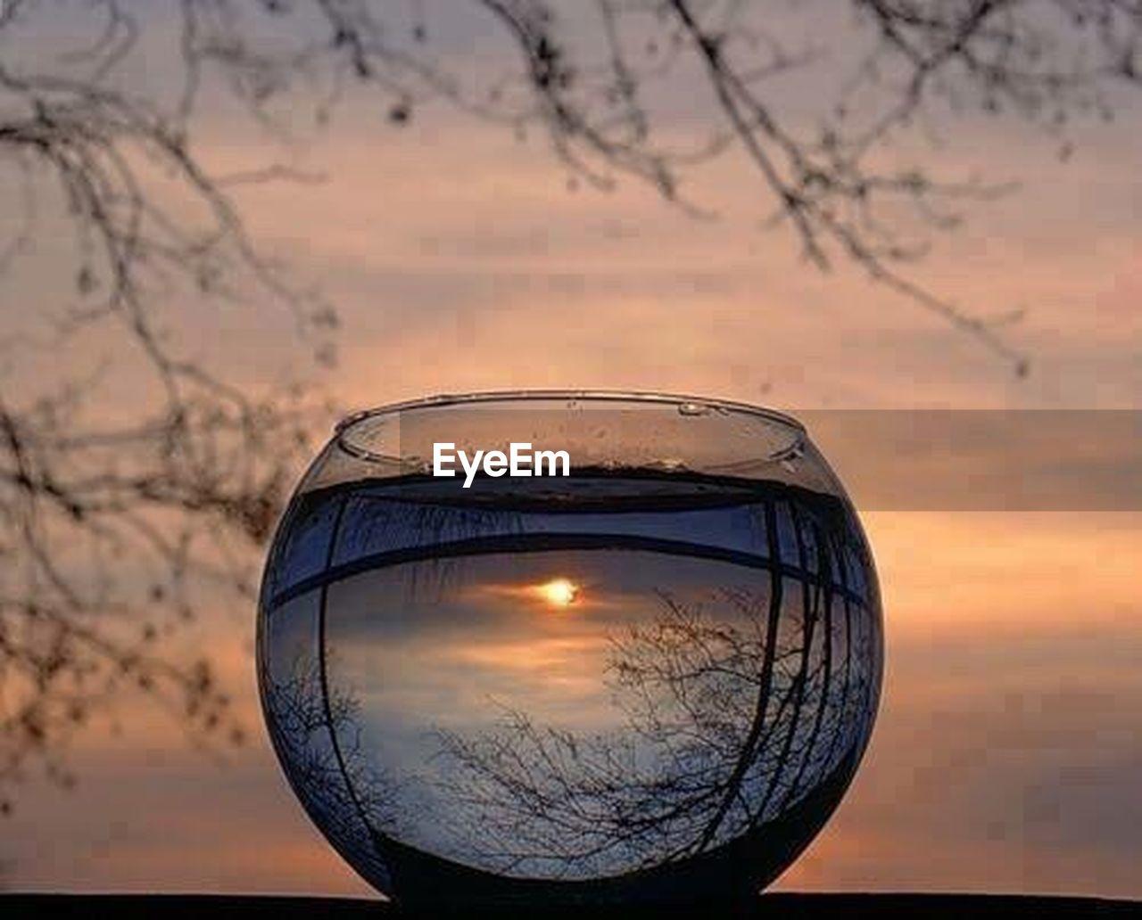 sunset, sky, reflection, dusk, no people, scenics, nature, outdoors, bare tree, landscape, beauty in nature, close-up, illuminated, tree, day