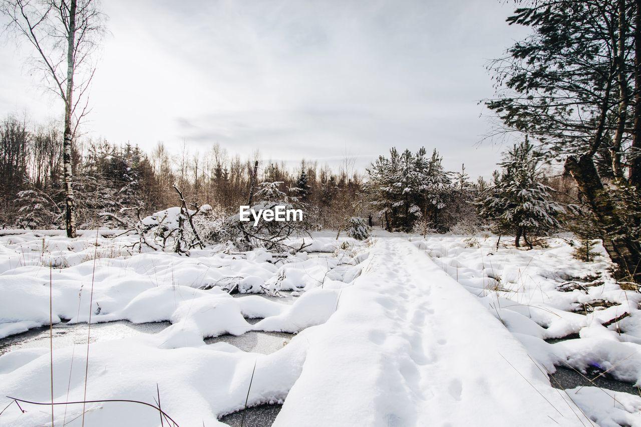 Surface level of snowed pathway along landscape