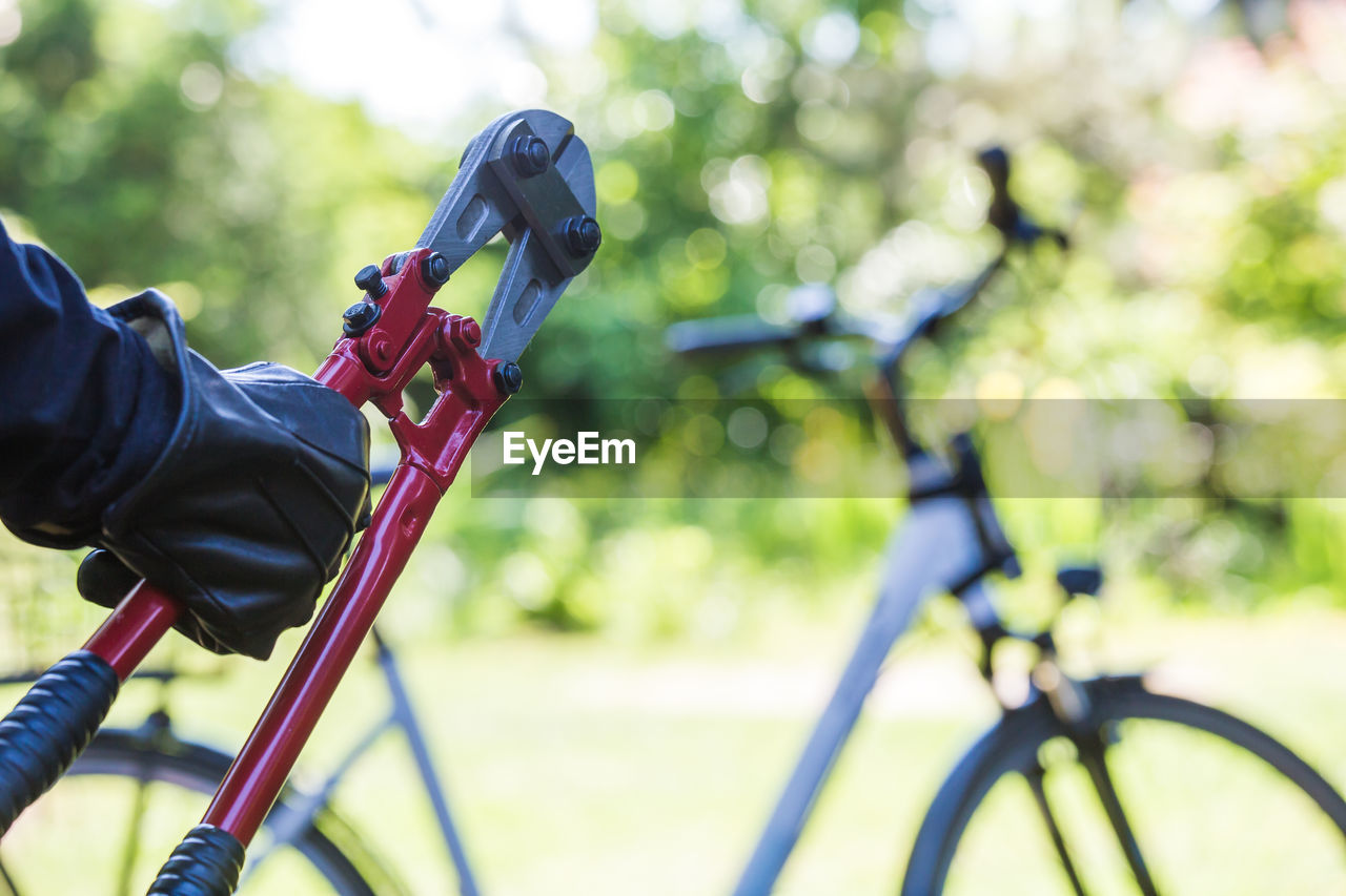 bicycle, real people, one person, focus on foreground, transportation, leisure activity, activity, lifestyles, day, holding, men, sport, land vehicle, ride, riding, mode of transportation, nature, plant, tree