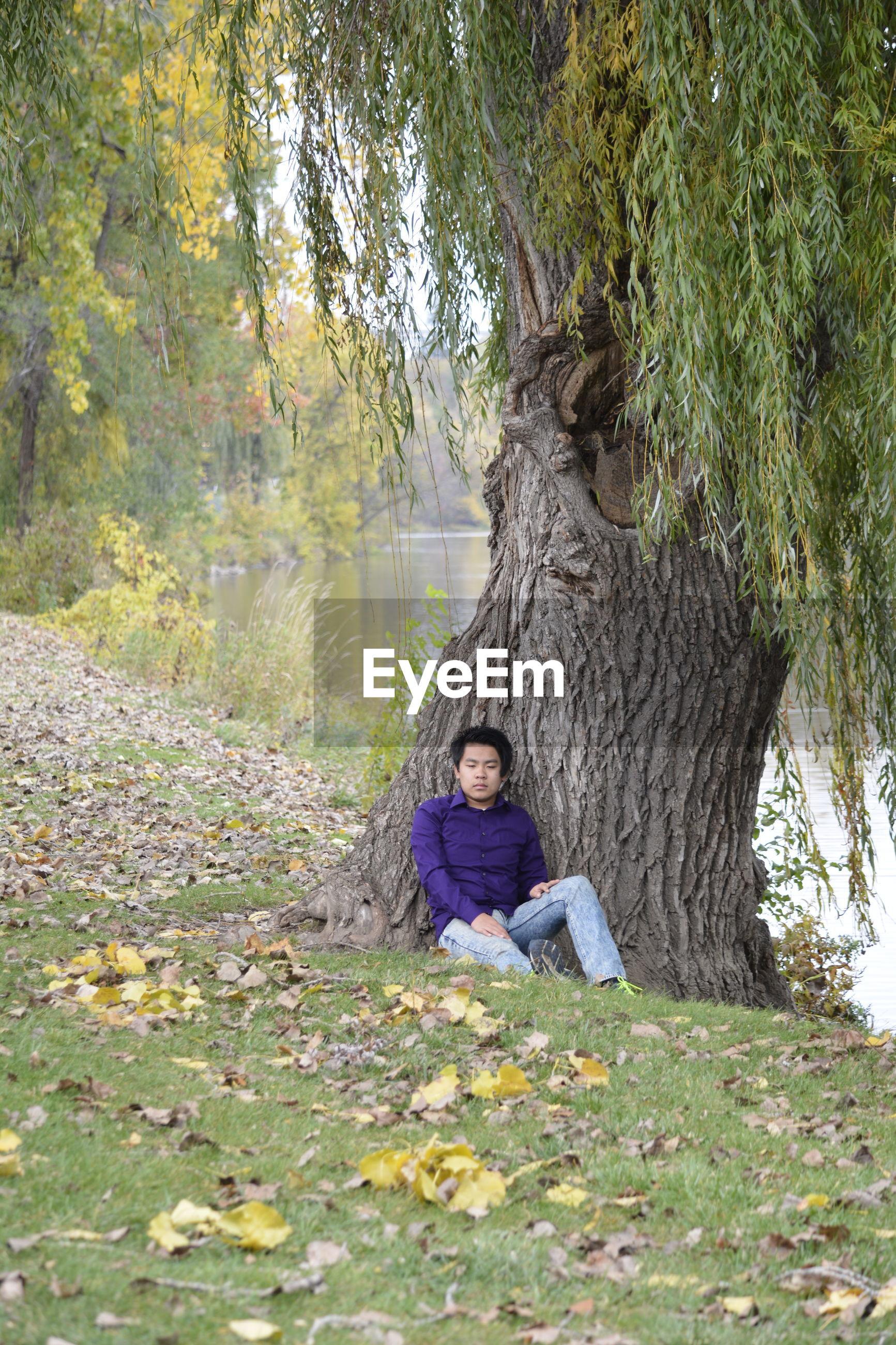 Man sitting by tree on field