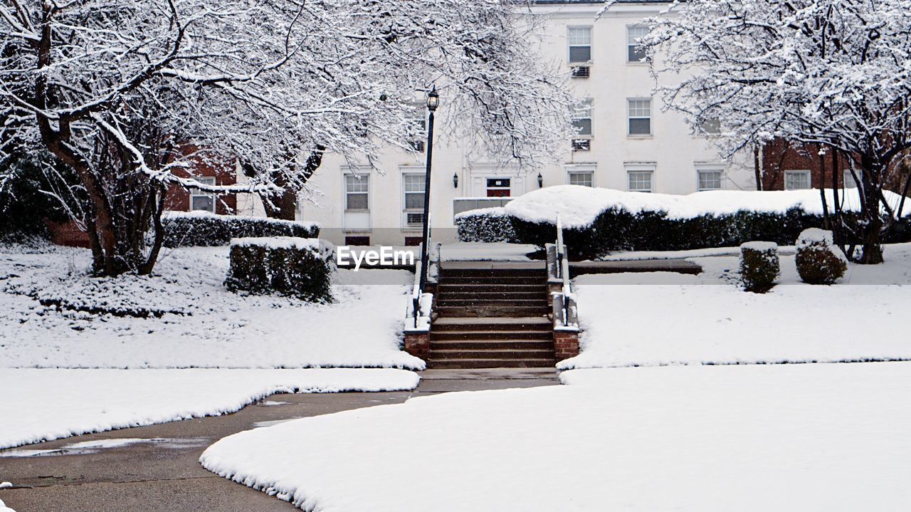 snow, winter, white color, cold temperature, tree, building exterior, architecture, built structure, no people, nature, outdoors, day, beauty in nature, city, sky