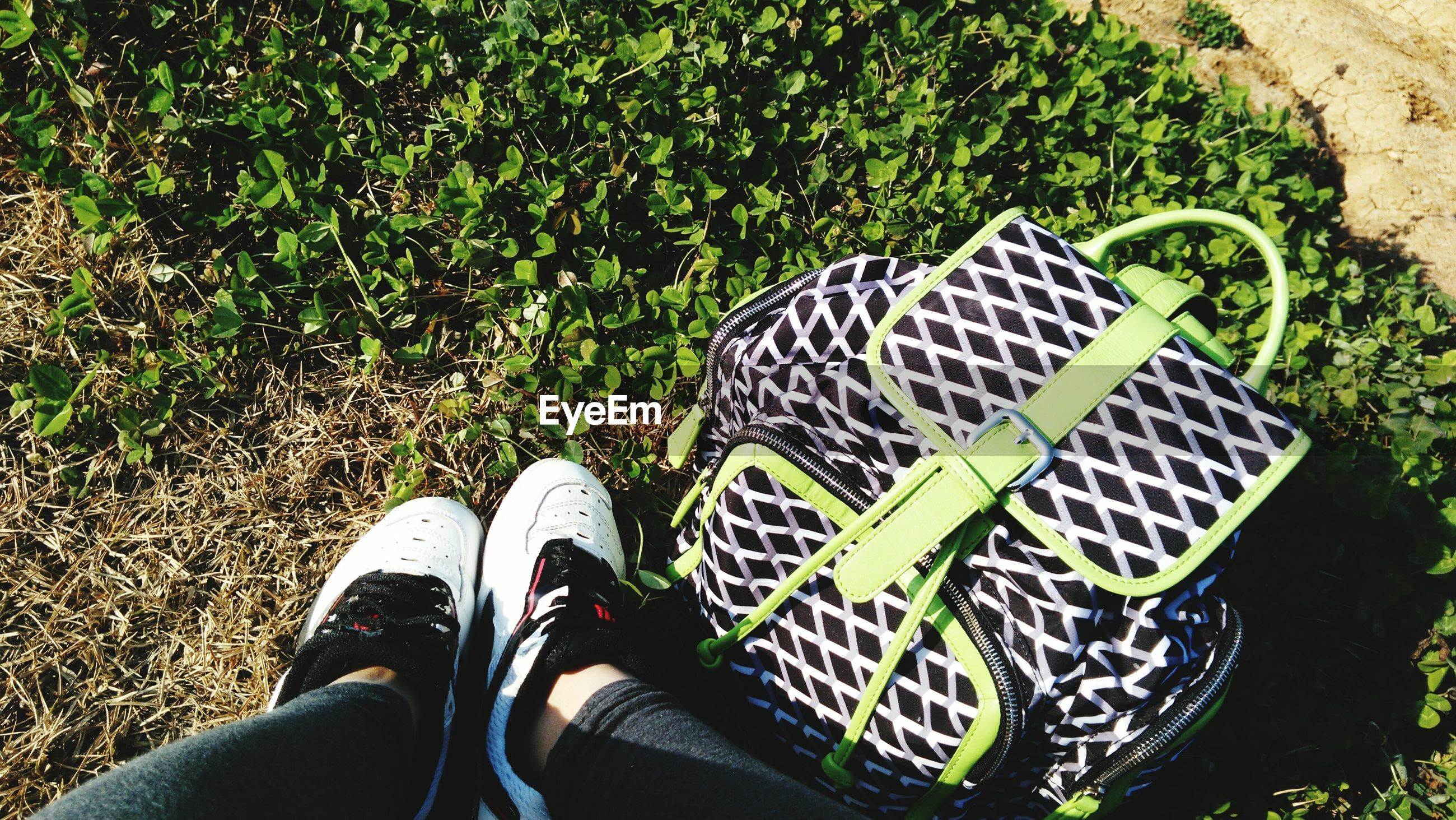 low section, person, personal perspective, shoe, lifestyles, high angle view, leisure activity, men, footwear, unrecognizable person, human foot, part of, standing, grass, field, canvas shoe, directly above