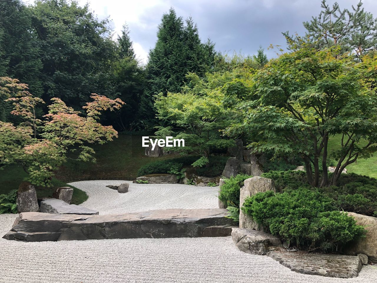 plant, tree, nature, beauty in nature, growth, no people, green color, sky, tranquility, day, tranquil scene, garden, scenics - nature, park, sunlight, outdoors, water, rock, solid, park - man made space