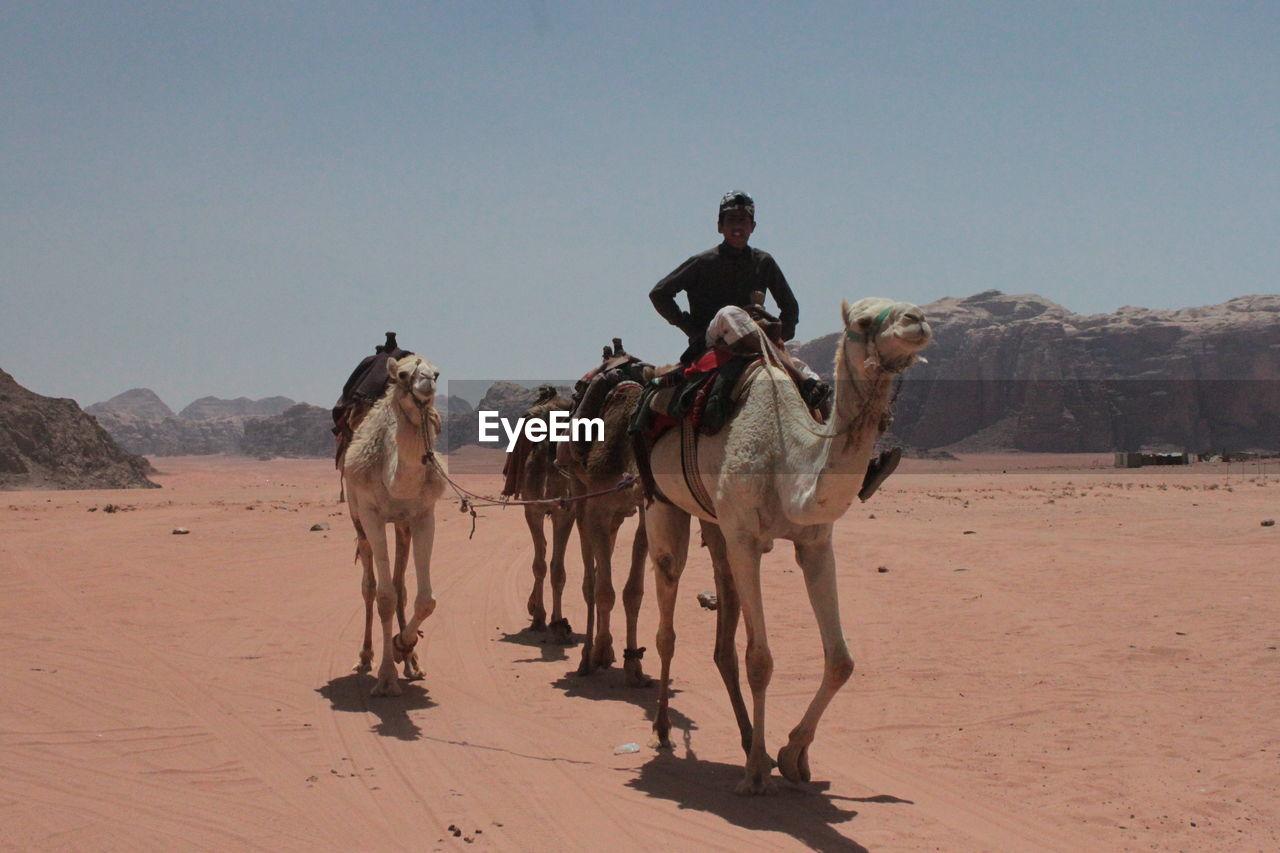 Man riding on camel at desert