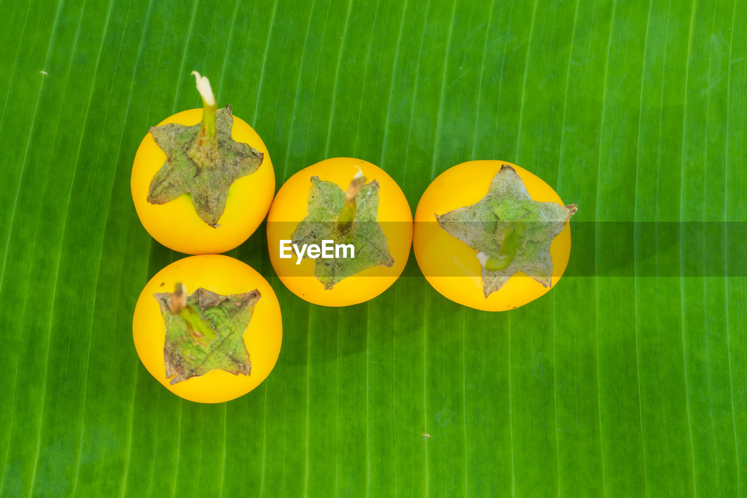 HIGH ANGLE VIEW OF YELLOW FRUITS ON GREEN LEAVES