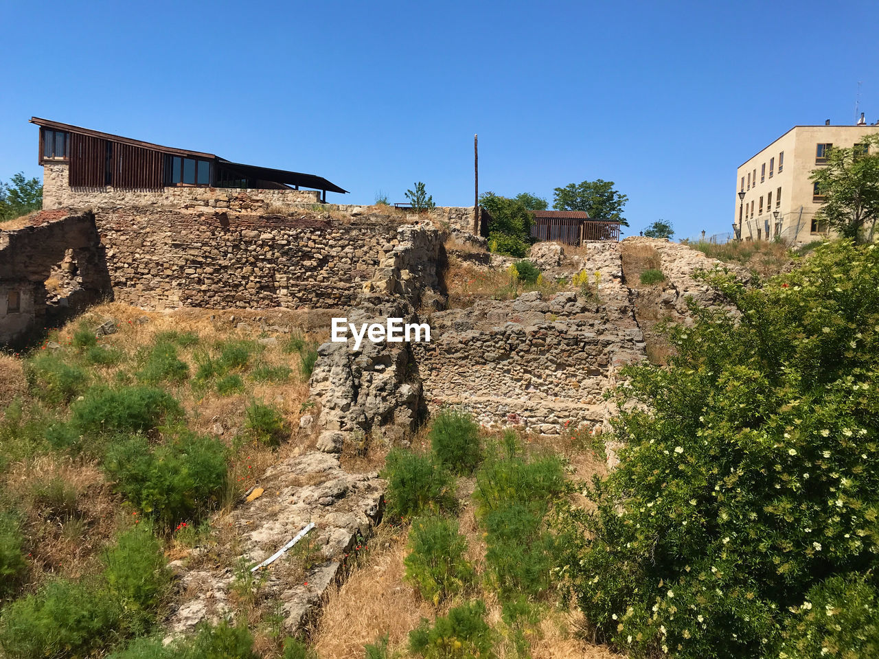 architecture, built structure, plant, building exterior, history, the past, ancient, sky, tree, nature, old, travel destinations, old ruin, day, no people, ancient civilization, building, travel, tourism, clear sky, outdoors, ruined, archaeology, stone wall