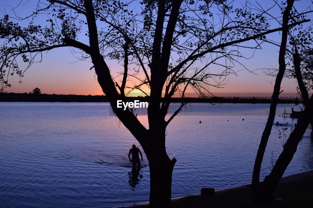 sunset, silhouette, tree, water, beauty in nature, nature, tranquility, tranquil scene, scenics, lake, no people, sky, outdoors, bare tree, tree trunk, branch, day