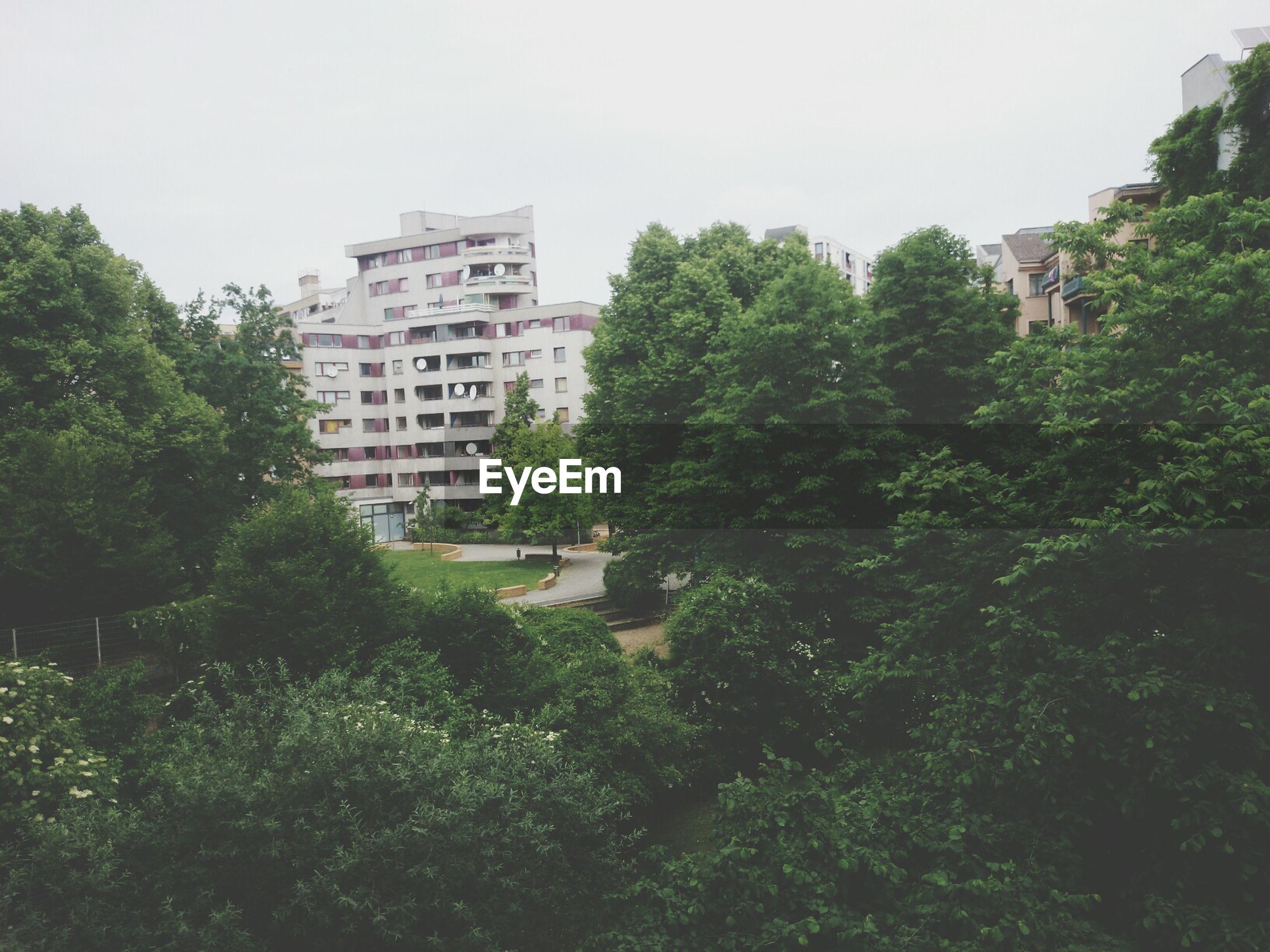 Residential buildings seen through greenery