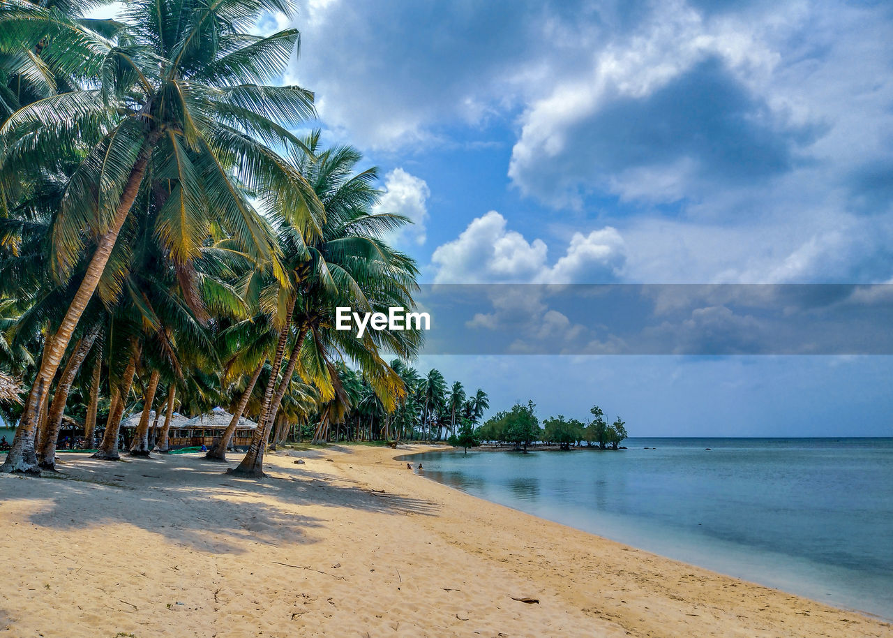 tropical climate, palm tree, sky, tree, beach, sea, land, water, cloud - sky, plant, beauty in nature, sand, tranquility, nature, scenics - nature, tranquil scene, growth, day, no people, horizon over water, coconut palm tree, outdoors, tropical tree, palm leaf, turquoise colored