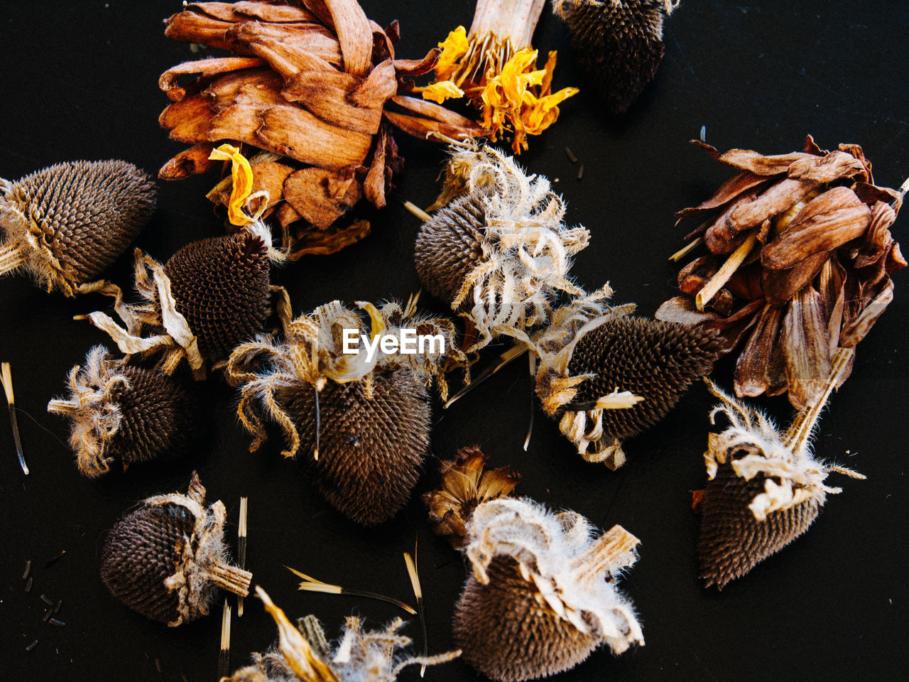 High Angle View Of Dried Flowers On Table