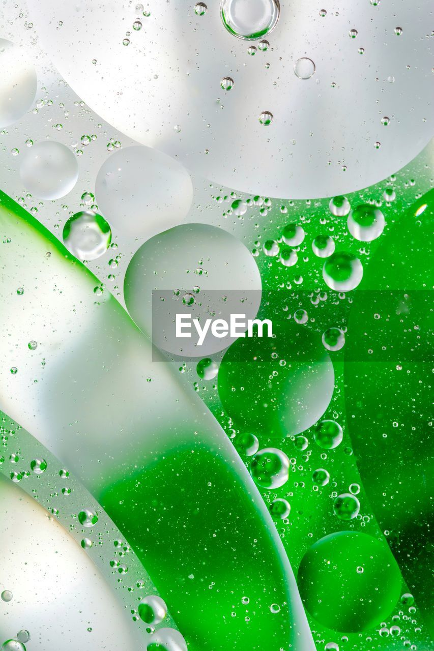 water, green color, full frame, drop, close-up, indoors, no people, backgrounds, wet, nature, transparent, food and drink, bubble, freshness, glass - material, refreshment, day, pattern, raindrop, purity
